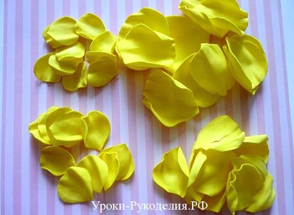 лепестки розы из фома