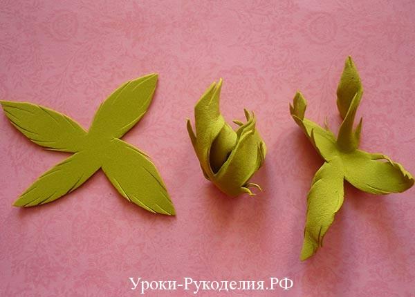 волнистые листья цветка