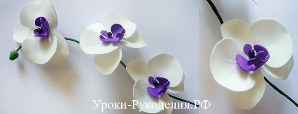 Орхидея своими руками из фоамирана