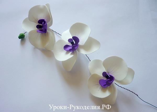 веточка орхидеи сделать