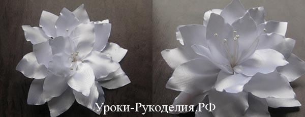 Белый цветок в школу для девочки