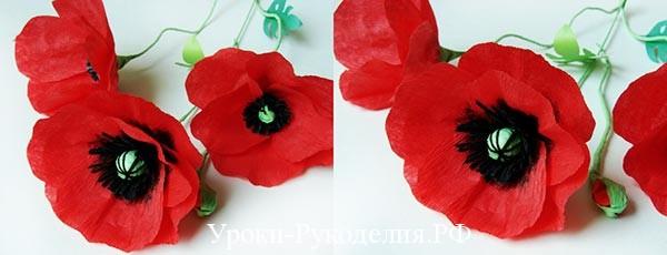 Цветы из бумаги: красные маки