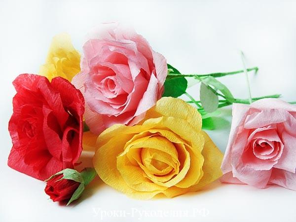 розы гофрированной бумаги
