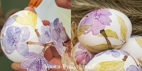 автор: Себилькова Анна.