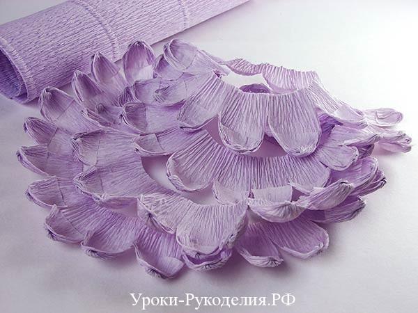 заготовка хризантемы