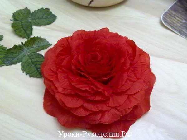 роза из лепестков