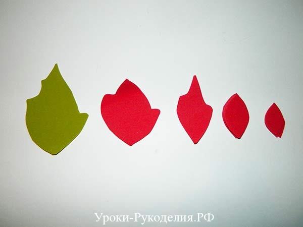 заготовки пуансетии