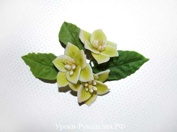 лилии с листочками