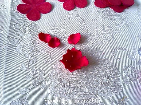 лепестки для розы