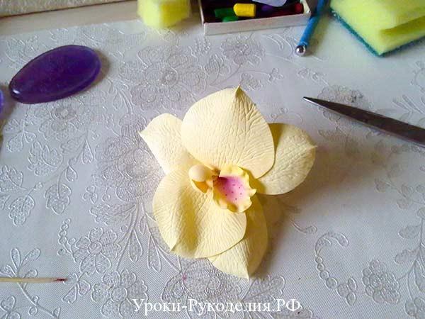 собрать орхидею