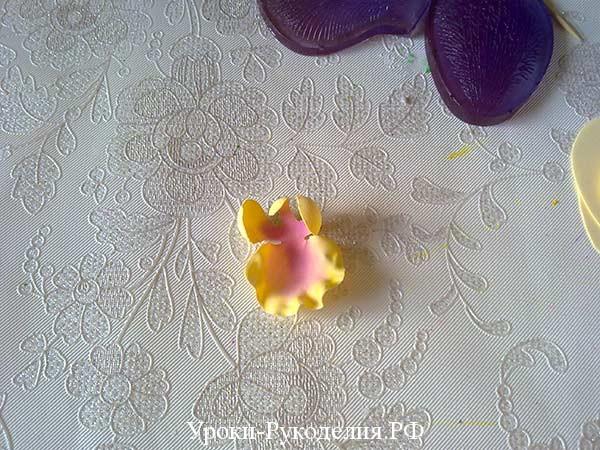 серединка орхидеи