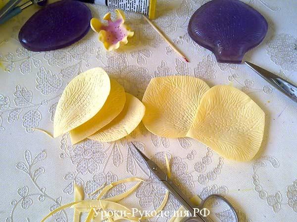 вырезанные лепестки орхидеи