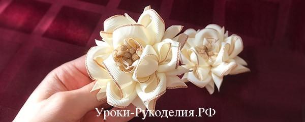 красивый цветок в школу