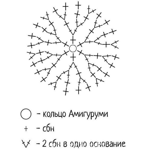 564_1